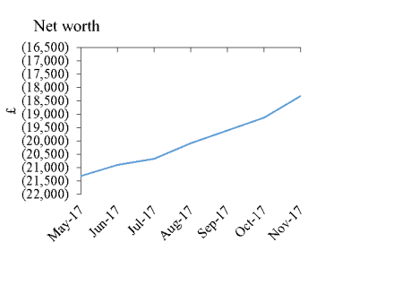 nov17 net worth graph